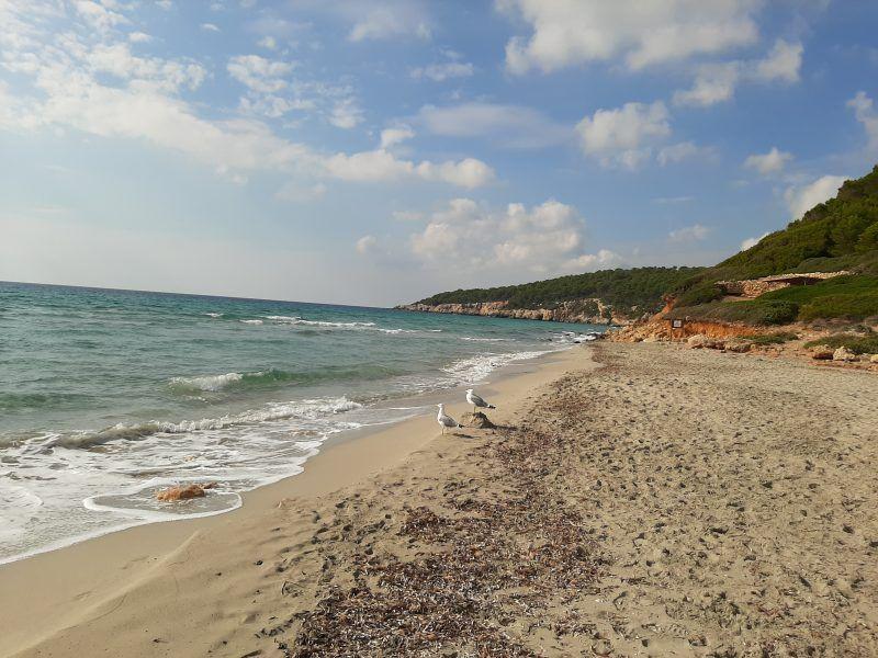 Visitar Menorca. Playa de Binigaus.