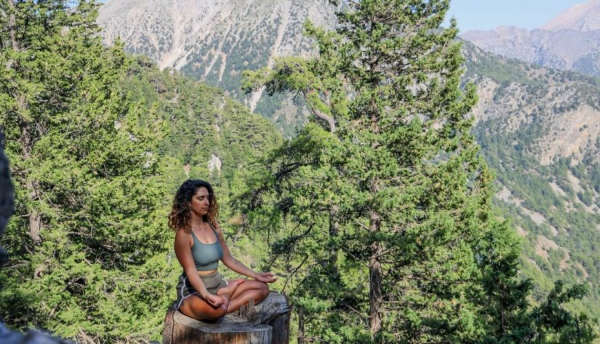 mindfulness meditation and wellbeing