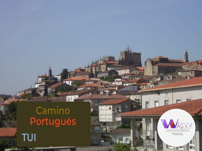 Camino Portugues Tui Santiago 02