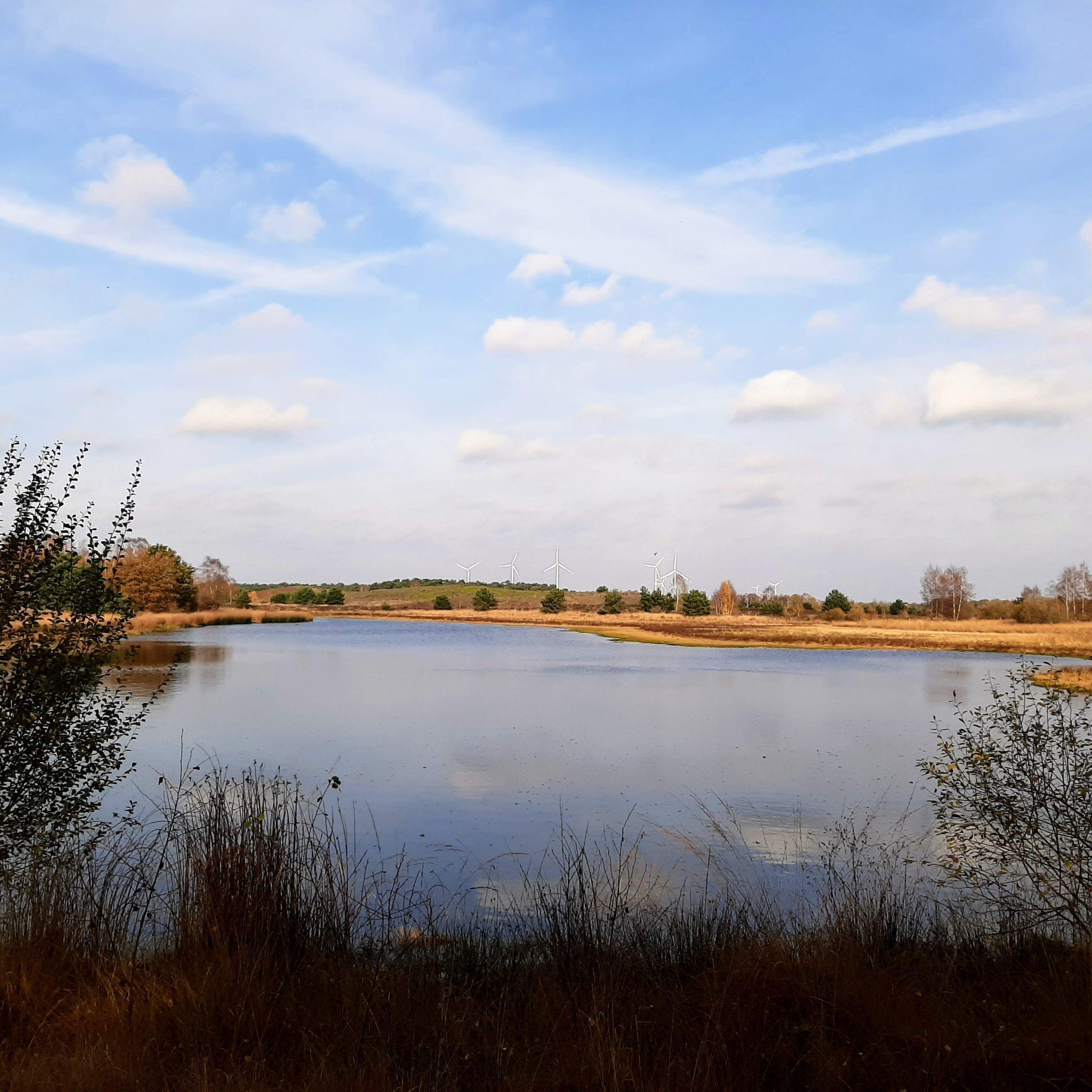 Dag 6 Hernen - Ewijk 20 km