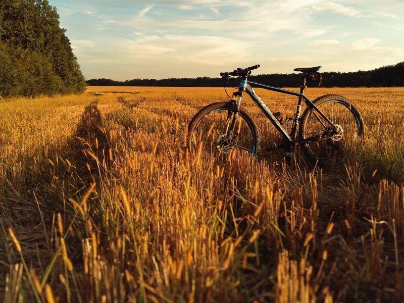 camino de santiago by bike